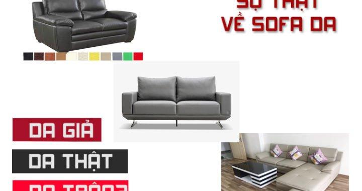 Sự thật về các chất liệu bọc sofa da