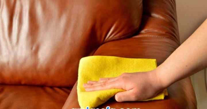 cách vệ sinh sofa da tại nhà đơn giản